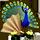 breedingmar2017_peacock_quest-workshop_small.png