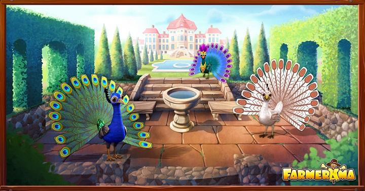 breedingmar2017_peacock_social-media-news_ui.jpg