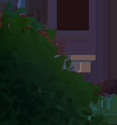 peacock_layer_bg_left-bush_overlap.png