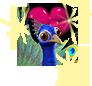 peacockbox_rune2.png